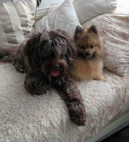 Charlie & Lexie